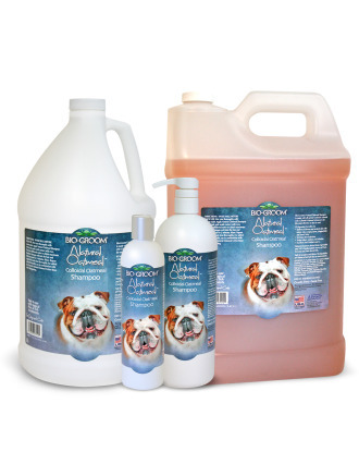Bio-Groom Natural Oatmeal Anti-Itch Moisturizing Shampoo for Sensitive Dogs and Puppies